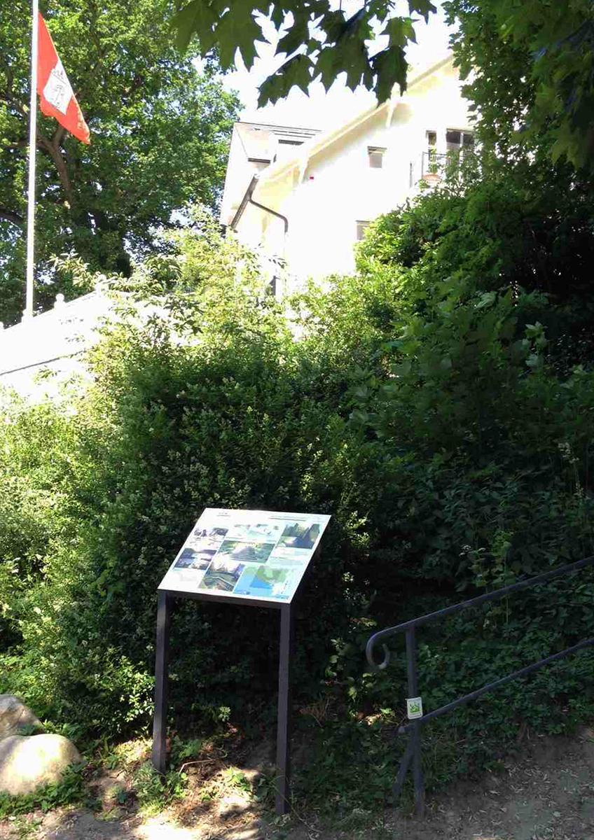Grüne Metropole_1
